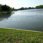 野池オカッパリは足場の多い場所が圧倒的に有利!