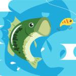 【バス釣り】クランクベイトの使い方と初心者さんにおすすめ品を紹介