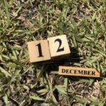 12月ならではのバス釣り!野池でもどこでも通用する攻略法とは?